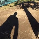 ウワサのときめき防災公園  【高砂7丁目公園】