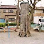 ウワサのシーソー公園  【吾妻児童遊園】