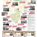 【180323葛飾イベント情報】  葛飾区内の桜を見に行こう!
